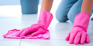 Cleaning House General House Cleaning Services