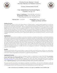lan administrator cover letter