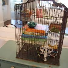 Bird Cage Decoration Decorating With A Birdcage U2014 The Pleated Poppy