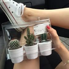 cactus home decor home accessory cactus box white home decor home decor cute