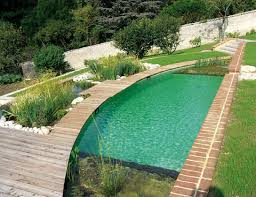Backyard Pool Ideas by Best 20 Natural Swimming Pools Ideas On Pinterest Natural Pools