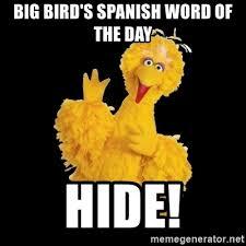 Spanish Word Of The Day Meme - big bird s spanish word of the day hide big bird meme meme