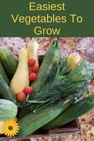 easy vegetable gardening for beginners backyard garden lover