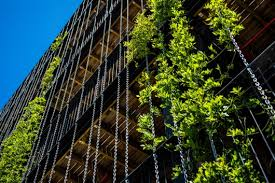 The Commons Inside Australias Most Sustainable Apartment - Sustainable apartment design
