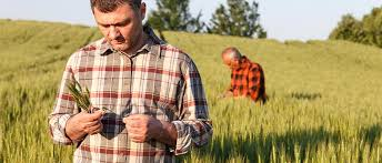 va farm bureau farm credit of virginias loans for farms homes land virginia