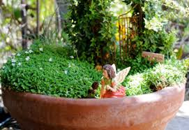 What Is An Indoor Garden Called - 177 best fairy mini u0026 flower pot gardens images on pinterest