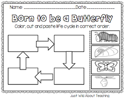 just wild about teaching bopping for butterflies butterfly unit