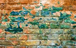 Getting Rid Of Mold In Basement by How To Detect Test For And Get Rid Of Mold In Your Home