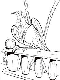 parrot pictures cartoon coloring