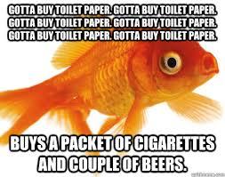 Funny Fish Memes - fish meme meme my day