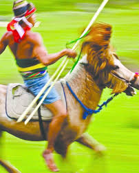 Wisconsin exotic travelers images Why you should travel to sumba indonesia exotic travel pasola jpg