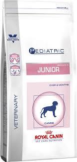 www medium pediatric junior medium dog dog food royal canin