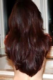 step cutting hair steps to beautiful hair