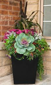 how to add kale to your fall arrangements trevey