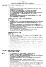 marketing manager resume field marketing manager resume sles velvet