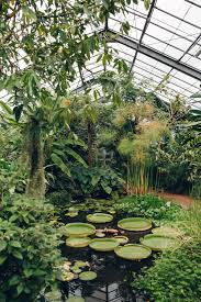 Botanic Gardens Dundee The Of Dundee Botanic Garden Dundee Gardens And