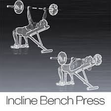 Crazy Bench Press 201 Best Bench Press Images On Pinterest Bench Press Benches