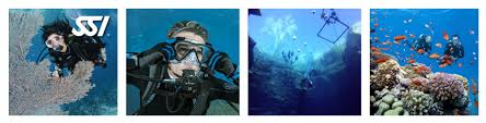 learn to dive padi open water diver course or ssi open water