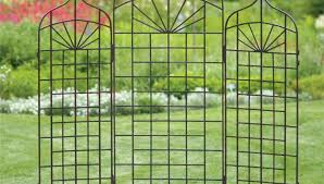 pergola cheap trellis tremendous cheap metal trellis u201a cute cheap