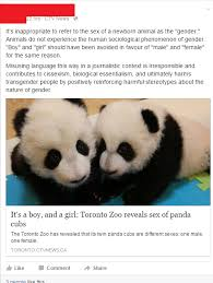 Inappropriate Sex Memes - now identifying sex of pandas is offensive social justice