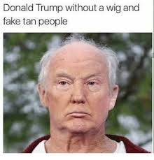 Memes Without Text - donald trump without a wig and fake tan people donald trump meme