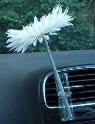 Vw Beetle Flower Vase Car Vase And Car Flower Coconut Scented White Spider Gerbera