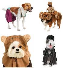 twenty awesome pet halloween costumes u2022 charleston crafted