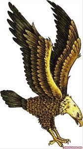 eagle tattoo designs samples tattoo viewer com