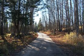 Wisconsin travel wallpaper images Forests backroads wisconsin dirt road forest back roads country jpg
