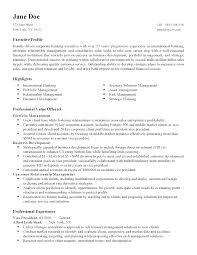 How To Make A Good Fake Resume Professional International Finance Director Templates To Showcase