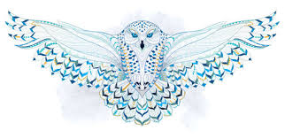 Patterned Flying Owl Drawing Illustration Snowy Owl Clipart Owl Wing Pencil And In Color Snowy Owl Clipart