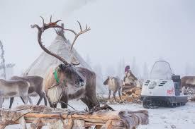 follow me how reindeer herders spend their life going after deer