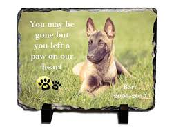 pet bereavement pet bereavement etsy