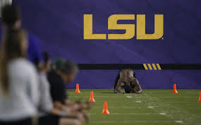 lsu doesn u0027t want student athletes to wear tigers gear while