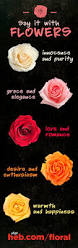 Heb Flowers - what different color roses mean lolo land pinterest rose