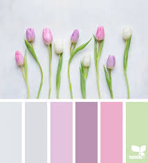 246 best color palettes design seeds images on pinterest color
