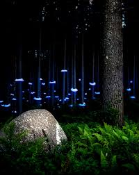 Landscape Light Landscape Light Sculptures Colossal