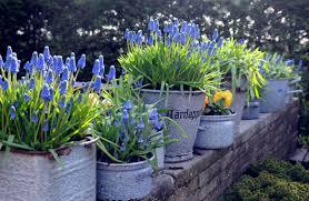 metronome keukenhof the most beautiful flower garden