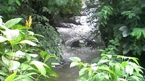 ayung river hanging gardens resort ubud bali youtube ayung river hanging gardens resort ubud bali