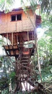 famous tree houses the famous tree house picture of durano eco farm spring resort