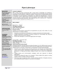 Resume Examples For Entry Level by Entry Level Business Analyst Resume Examples Resume For Your Job