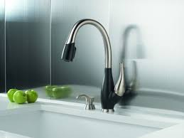 Moen Haysfield Kitchen Faucet by Furniture Single Handle Lowes Kitchen Faucets With Pull Out