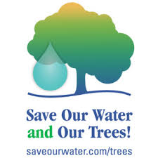 save our water and our trees save our water