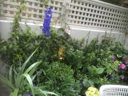 small plant supports adorable small trellis with additional trellises plant supports