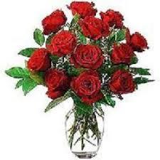 Rose Flower Images Rose Flower In Nashik Maharashtra Manufacturers U0026 Suppliers Of