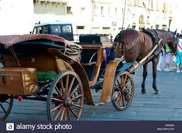 Nice Hourse An Horse Drawn Carriage And Nice Horse Stock Photo Royalty Free