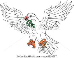 clipart vector of dove with olive leaf drawing drawing sketch