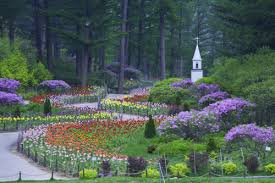 the garden of morning calm 아침고요수목원 official korea