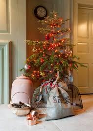 buy indoor berry lights delivery by waitrose garden in