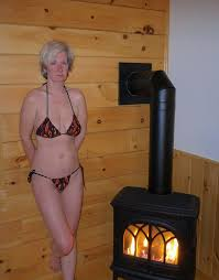 home improvement wood burning stove